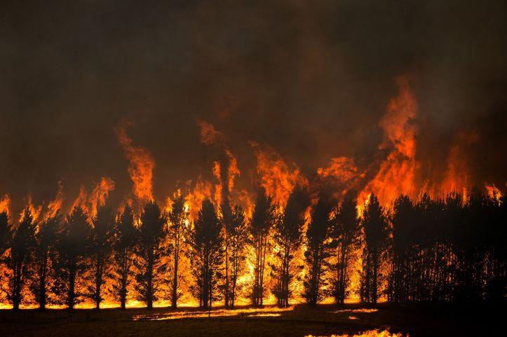 Jan. 2020 Fire of Jan. 10 (Matthew Abbott:NYT)