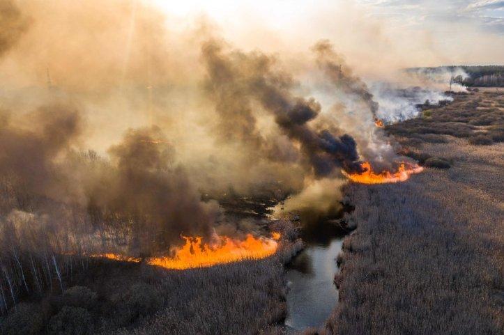 April 2020 Chern fire (Volodymyr Shuvayev:AFP)